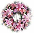 fleursmorts.jpg